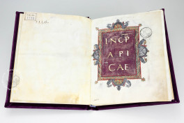 Apicius De Re Coquinaria, Vatican City, Biblioteca Apostolica Vaticana, Urb. Lat. 1146, Facsimile edition by Imago, decorated velvet with gilded studs