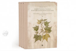 Paul Kitaibel: Descriptiones Et Icones Plantarum Rariorum HungarFacsimile edition by Pytheas Books